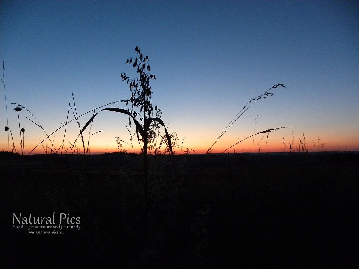Sonnenuntergang im Waldviertel