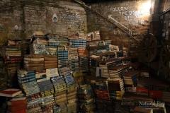 Libreria_Aqua_Alta