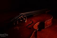 violin_(6)
