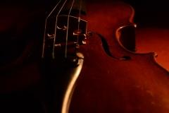 violin_(7)